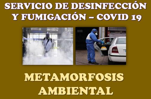imagen alusiva Metamorfosis Ambiental - Desinfección